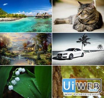 The Best Mixed Wallpapers 415