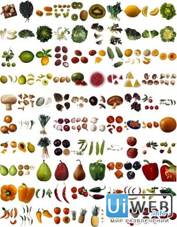 Complete Produce Library - 1 & 2 ( 2 CD )